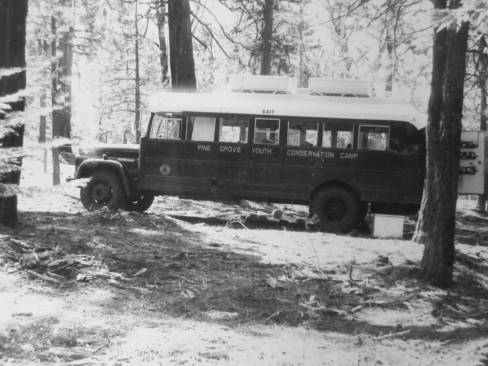 An inmate transport bus surrounded by pine trees.