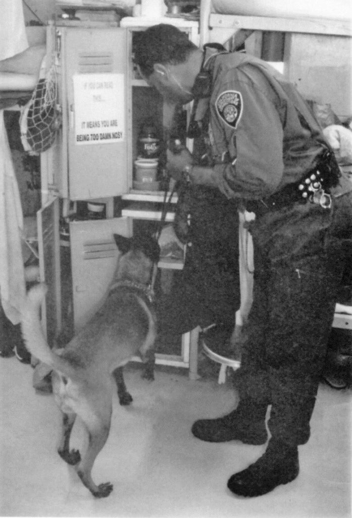 Correctional Officer has a dog sniffing through a locker in a prison dorm area.