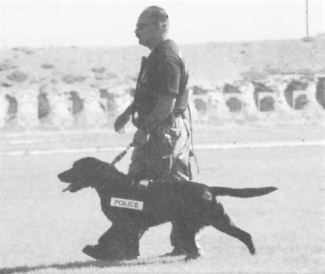 Correctional officer walks with a police dog.