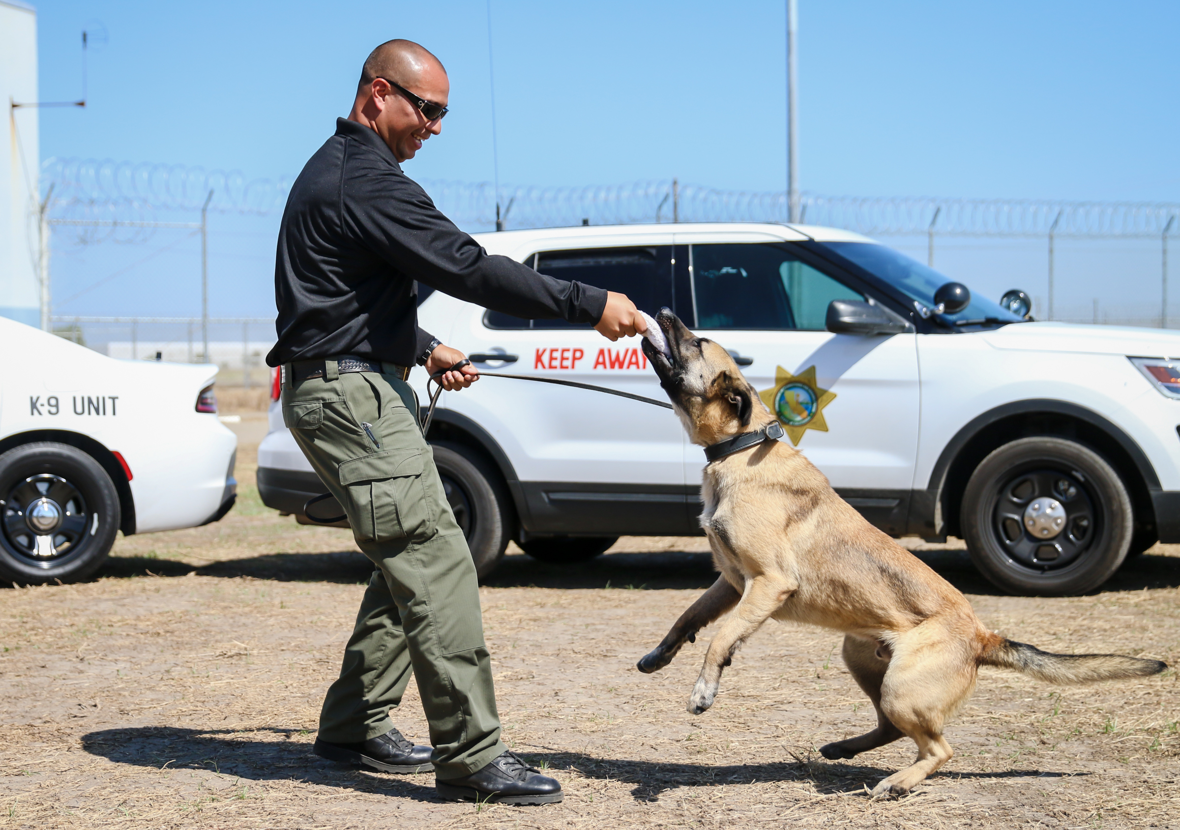 Officer and dog play.