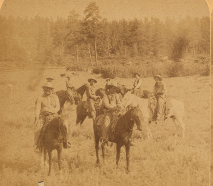 Men on horseback in a meadow with pine trees behind them.