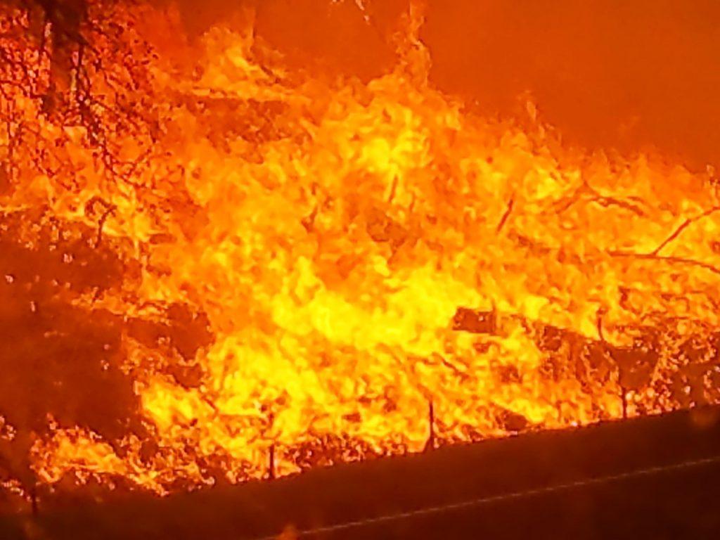 Orange flames fill photo.