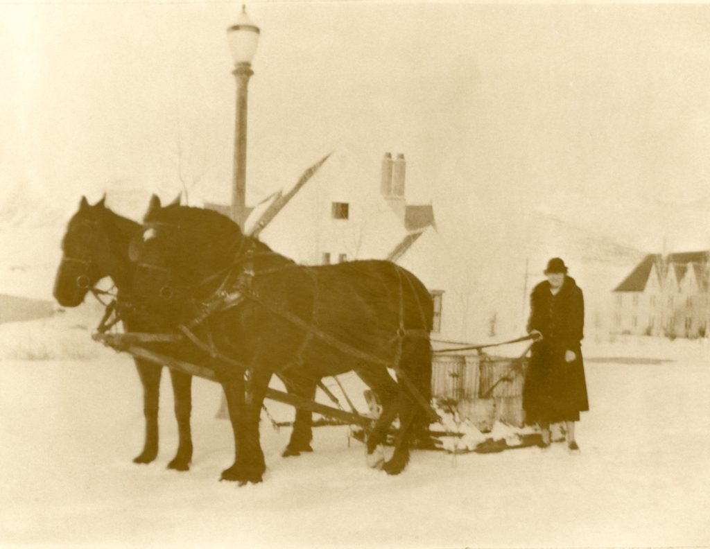Women handles garbage by drive a team of two horses and a large wagon.