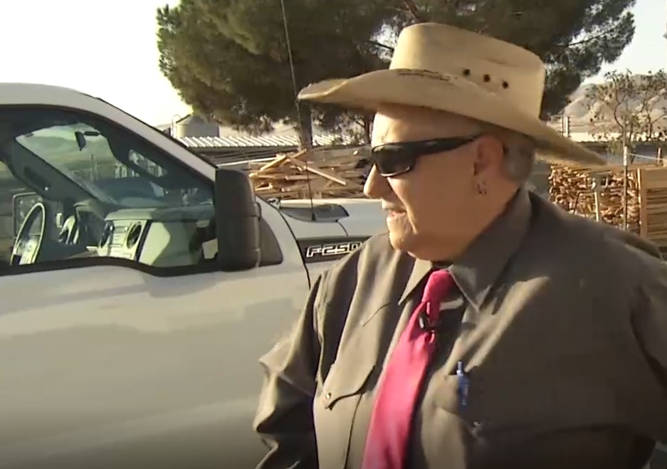Woman wears cowboy hat, pink tie and sunglasses.
