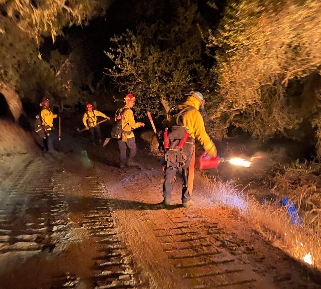 Four firefighters on a dark road use a torch to help create a fuel break.