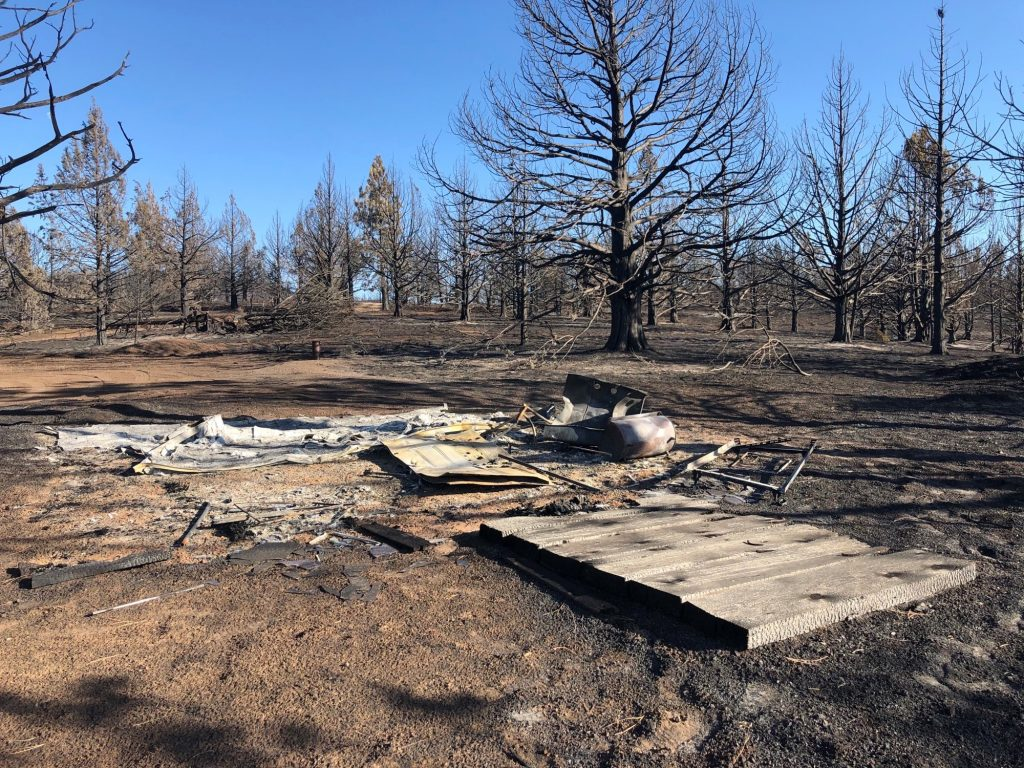 A burned out structure with blackened trees nearby.