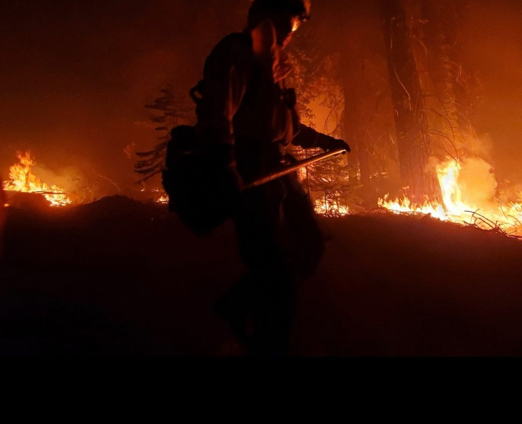 A Ventura Training Center firefighter is silhouetted against flames in the trees.