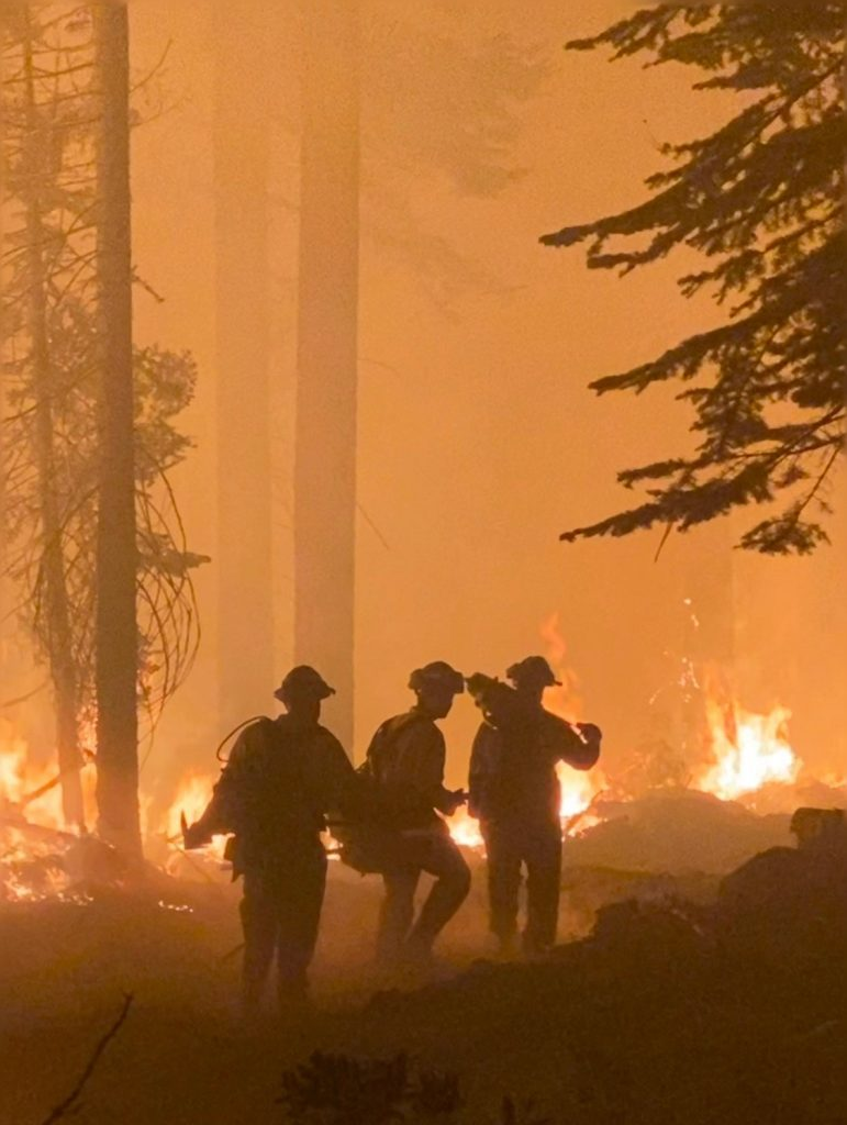 Ventura Training Center firefighters are silhouetted against flames in the trees.