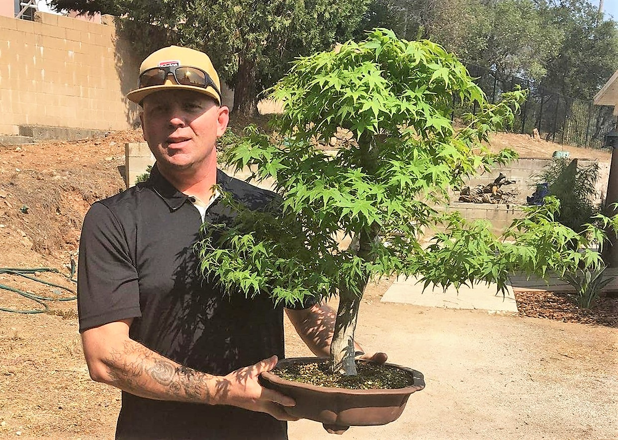Jason Anderson holds a bonsai tree.
