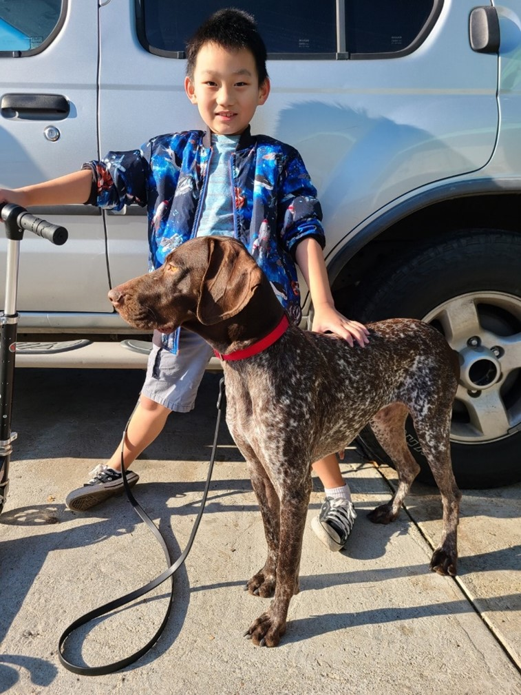 Adopted dog Annika and a little boy.