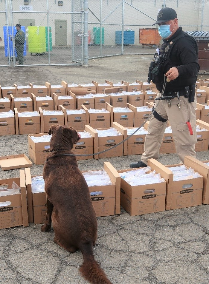 A K-9 and correctional officer check packages.