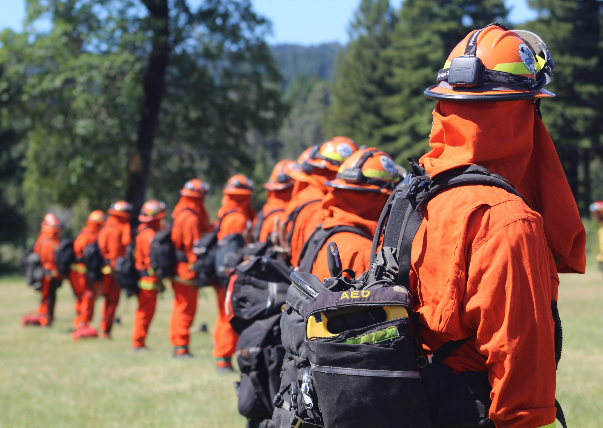Firefighters in full gear stand in a line.
