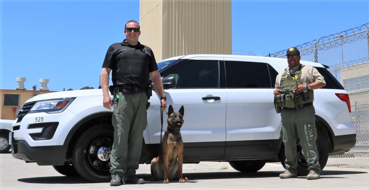 Highway wreck found two correctional officers, shown here with a K-9 at a prison, helping.