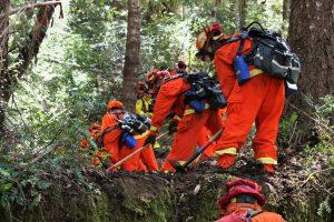 Incarcerated fire crews scrape and cut a break in thick forest.