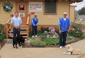 Three incarcerated men in New Life K9s program stand with dogs.