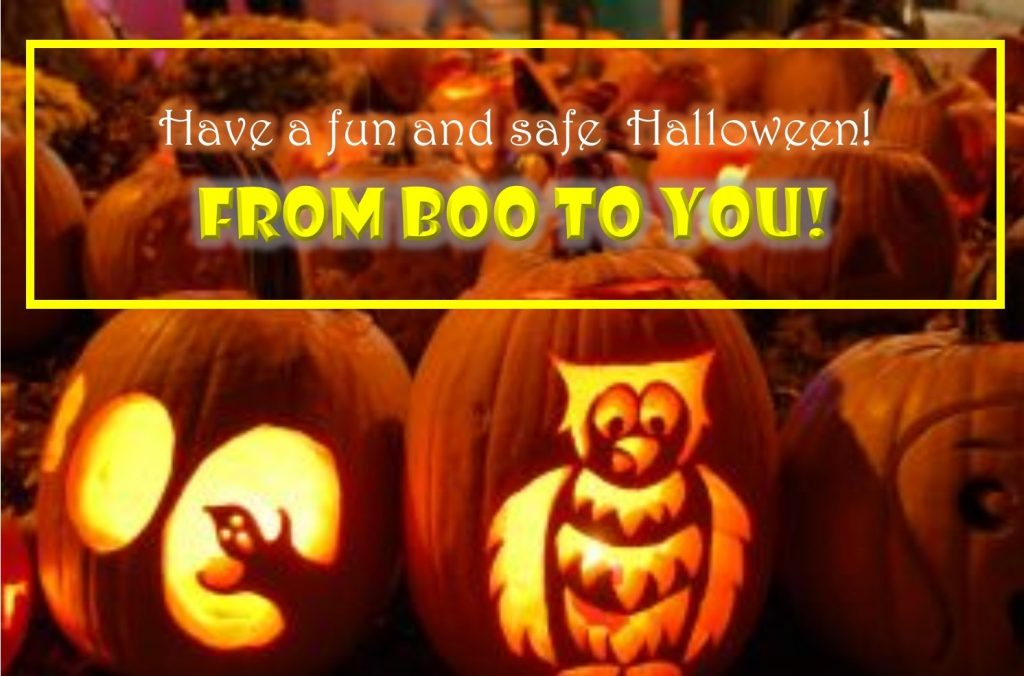 Title Graphic:  Have a fun and Safe Halloween!  From Boo to you!