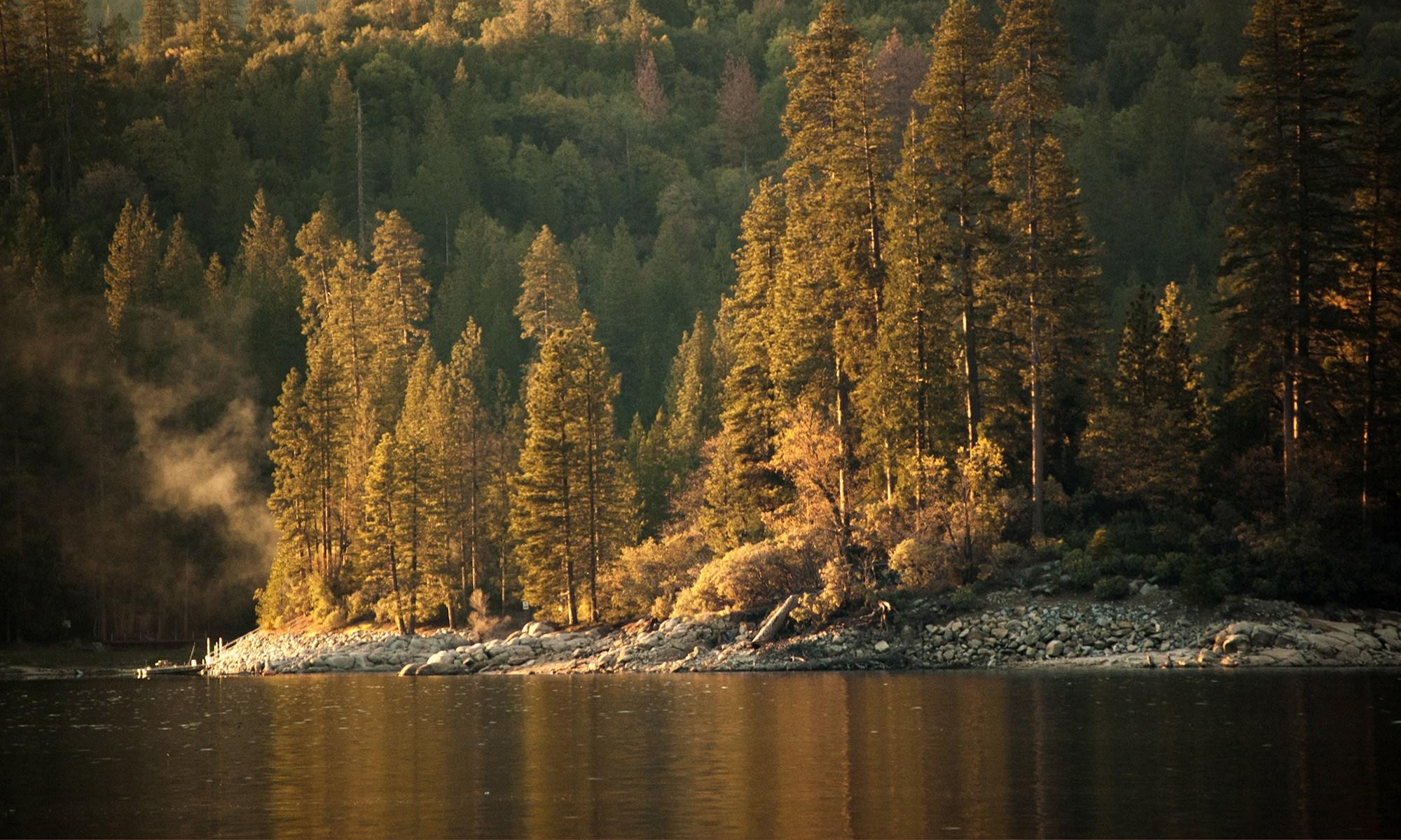 Hume lake with trees