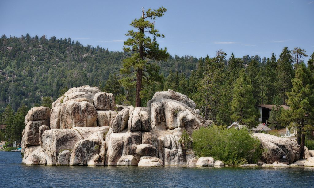 Big Bear with light colored rocks on lake