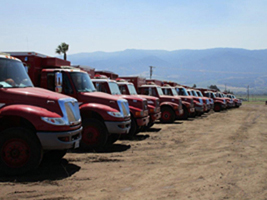 line of calfire fire trucks