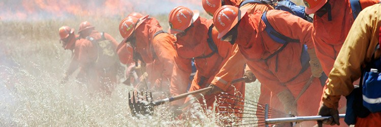 inmates in training firefighting