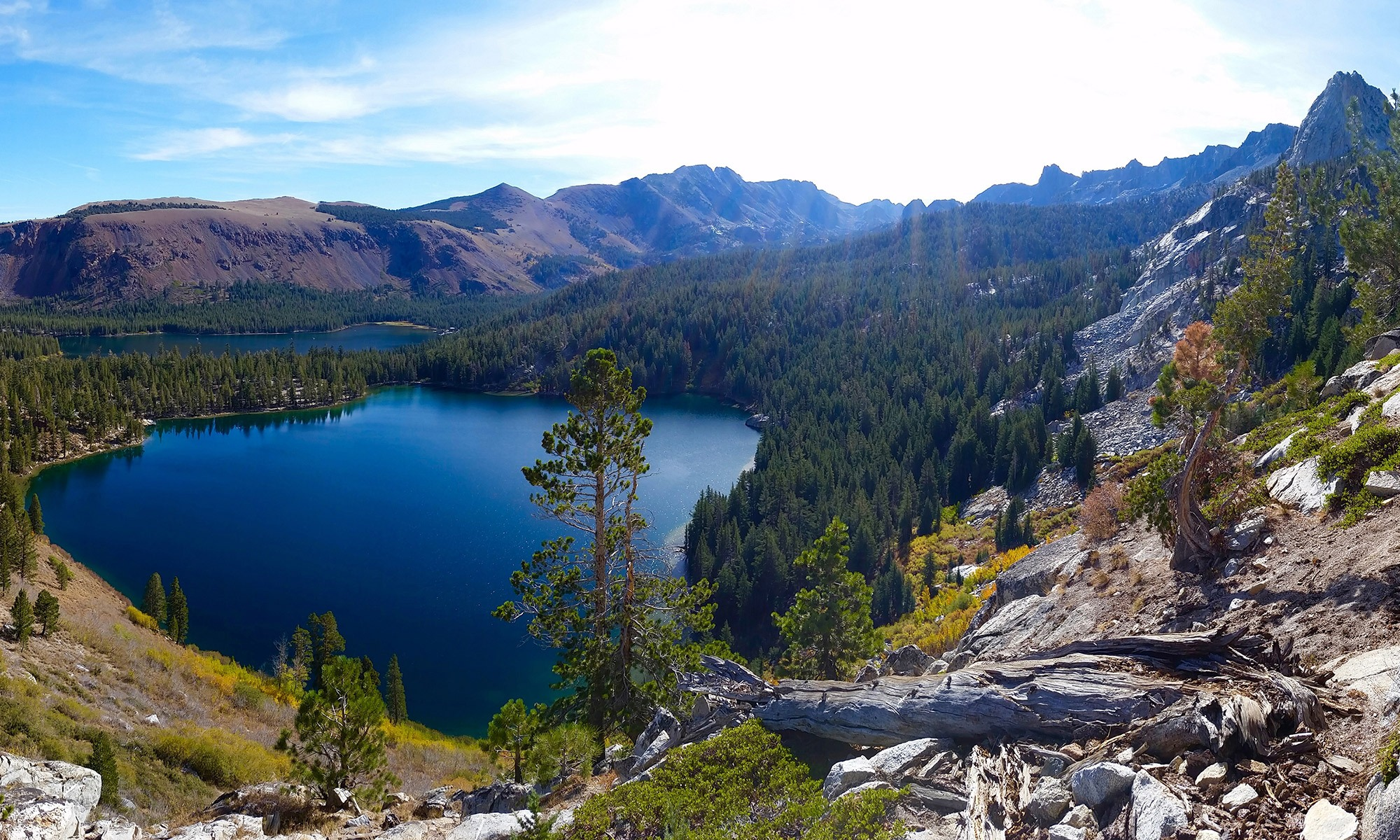 Picture of Mammoth Lake