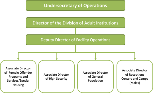 A chart depicting the organizational structure for the Division of Adult Institutions